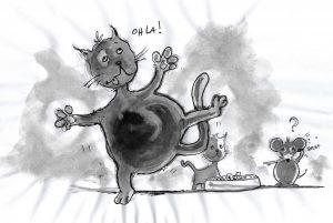 L'obésité du chat se joue avant l'âge de un an, pendant la période de croissance du chaton et après sa stérilisation.