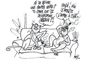 Les chats n'ont jamais eu à faire des prélèvements alimentaires dans le monde végétal.